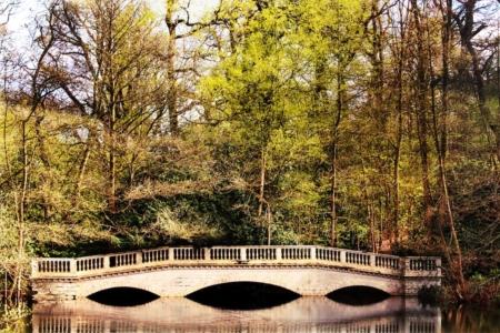 Liam-Gayle-Kenwood-Bridge-1